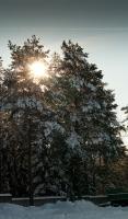 Бацылева Валентина_7