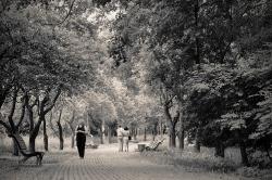 фото: Лапшина Светлана