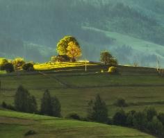 Про домик, горы, дерево и солнце...