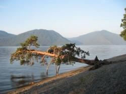 Телецкое озеро.Алтай._1