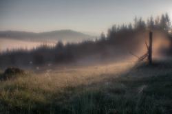 Туман, туман укутал землю вновь...